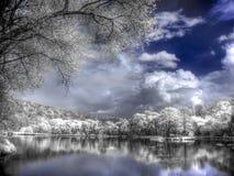 Un lac de forêt est dans une couleur infrarouge Photographie stock libre de droits
