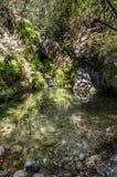 Un lac de forêt est de jour en jour le soleil consacré, dans le premier plan beaucoup de pierres image stock