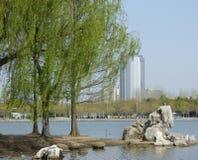 Un lac en parc de siècle Photographie stock