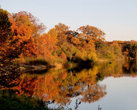 Un lac pendant la chute avec des arbres se reflétant outre de l'eau Photo stock