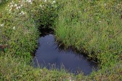 Un lac sous forme de coeur Image stock