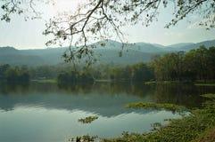 Un lac, une forêt et des montagnes à l'arrière-plan images stock