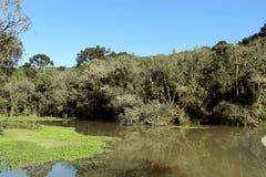 Un lago Fotografie Stock