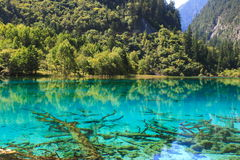 Un lago colorido del parque nacional de Jiuzhaigou foto de archivo libre de regalías