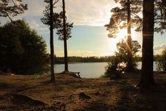 Un lago con una spiaggia sabbiosa nella foresta Fotografie Stock
