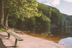 Un lago con un vecchio banco di legno in mezzo ad una foresta ricca Immagini Stock