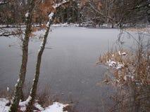Un lago congelato Immagine Stock