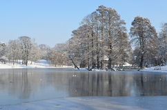 Un lago congelato in un paesaggio di inverno Fotografia Stock Libera da Diritti