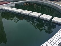 Un lago contaminado fotos de archivo