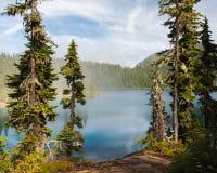 Un lago de invitación y montañas enmarcados por los árboles de pino fotografía de archivo
