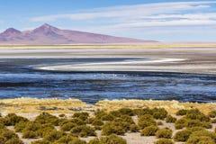 Un lago de sal, flamencos, montañas y colores en reserva nacional de los flamencos del Los Foto de archivo