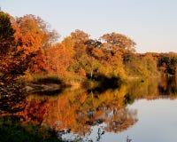 Un lago durante caída con los árboles que reflejan del agua Foto de archivo