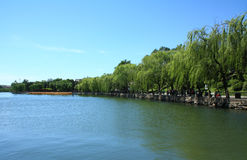 Un lago en el parque Fotos de archivo