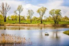 Un lago en un parque imagenes de archivo