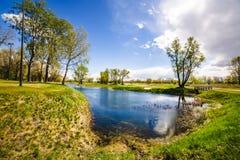 Un lago en un parque imagen de archivo