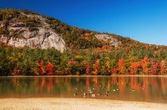 Un lago fra le colline con gli alberi variopinti luminosi di autunno Giorno pieno di sole Parco nazionale di acadia U.S.A. maine fotografie stock libere da diritti