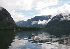 Un lago in Hallstatt, Austria Fotografia Stock Libera da Diritti