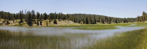 Un lago inesperado alto para arriba en la meseta de Colorado Imagen de archivo