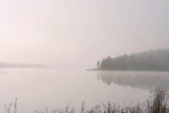 Un lago nella foresta Fotografia Stock Libera da Diritti