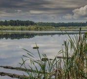Un lago pacifico Immagini Stock