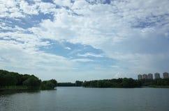 Un lago in un parco Immagini Stock Libere da Diritti