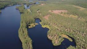 Un lago rodeado por un bosque otoñal almacen de video