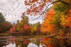 Un lago tranquilo en el bosque con los árboles brillantemente coloreados del otoño y reflexiones en el agua fotos de archivo libres de regalías