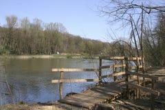 Un lago, un ponte di legno in una foresta in anticipo 1 della molla Immagine Stock