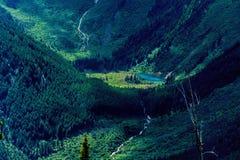 Un lago verdadero wilderness Imágenes de archivo libres de regalías