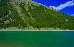 Un lago verde indicativo della montagna lungo un pendio coperto di pini nel parco nazionale di grande paradiso, in Piemonte, l'It Immagine Stock Libera da Diritti