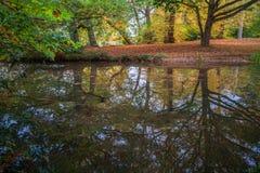 Un lago in Virginia Water in Surrey, Regno Unito Fotografie Stock
