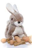 Un lapin de Pâques pelucheux avec des oeufs Photo stock