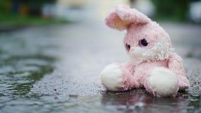 Un lapin mignon de jouet se repose dans un magma sous la pluie Image libre de droits