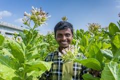 Un lavoratore del tabacco che sorride fuori di Dacca, Vatara, manikganj, Bangladesh Immagini Stock