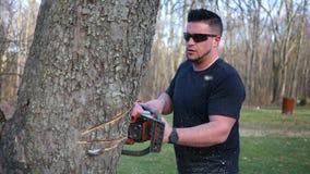Un lavoratore impiegato servizio bello dell'albero scolpisce all'albero con la motosega stock footage