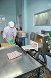 Un lavoratore sta controllando per vedere se c'è metallo nascosto in prodotti finiti in una fabbrica dei frutti di mare nella cit Fotografie Stock