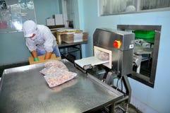 Un lavoratore sta controllando per vedere se c'è metallo nascosto in prodotti finiti in una fabbrica dei frutti di mare nella cit Fotografia Stock Libera da Diritti