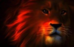 Un león en las sombras fotografía de archivo