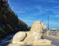 un león que mira el mar Foto de archivo libre de regalías