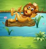 Un león sonriente en una madera seca Foto de archivo