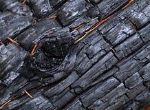 Un legno carbonizzato con i rigonfiamenti Fotografie Stock Libere da Diritti
