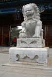 Un leone di pietra di marmo cinese si siede davanti ad un padiglione dipinto tradizionale del eave Fotografia Stock