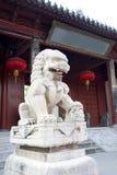 Un leone di pietra in porcellana Fotografia Stock Libera da Diritti