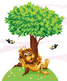 Un leone di re ed i due uccelli Immagini Stock Libere da Diritti