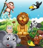 Un leone sopra il ceppo circondato con gli animali allegri Immagini Stock Libere da Diritti