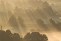 Un lever de soleil au-dessus du regain Photo libre de droits