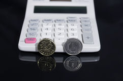 Un libra y zloty del pulimento Fotografía de archivo