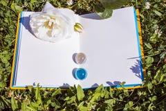 Un libro abierto con páginas vacías, una flor blanca de la rosa y un trébol verde Concepto romántico Copie el espacio Imágenes de archivo libres de regalías