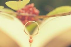 Un libro abierto con un anillo de compromiso como símbolo del amor Imagen de archivo libre de regalías