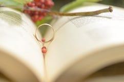 Un libro abierto con un anillo de compromiso como símbolo del amor Fotografía de archivo